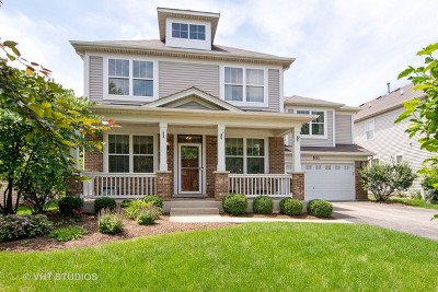 St. Charles Single Family Home For Sale: 531 Valley View Drive