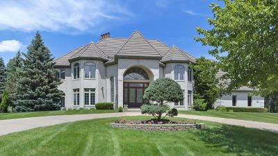Burr Ridge Single Family Home For Sale: 2 Chippewa Court