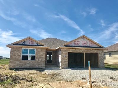 Bourbonnais Single Family Home For Sale: 6104 Park View Drive