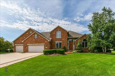 Bourbonnais Single Family Home For Sale: 901 Canterbury Lane