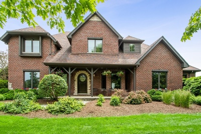 Orland Park Single Family Home For Sale: 14658 South 82nd Avenue