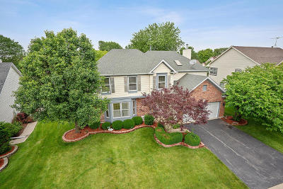 Hoffman Estates Single Family Home For Sale: 1520 Crowfoot Circle South
