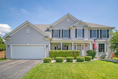 Plainfield Single Family Home For Sale: 16847 Arbor Creek Drive