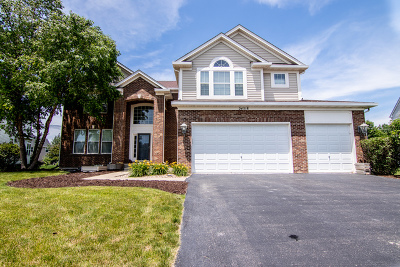 Plainfield Single Family Home For Sale: 24518 Sand Creek Court