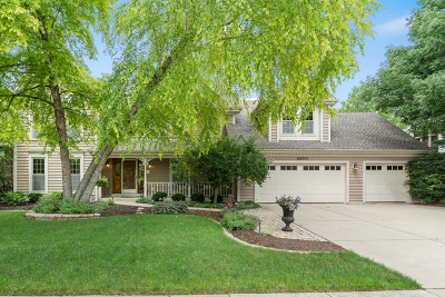 Wheaton Single Family Home For Sale: 26w050 Gold Finch Court