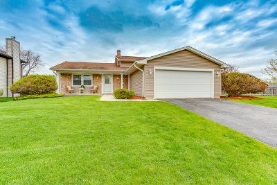 Hoffman Estates Single Family Home For Sale: 1760 Burr Ridge Drive