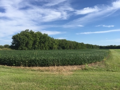 Mc Henry County Residential Lots & Land For Sale: 00 Brink Street