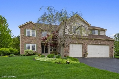 Mundelein Single Family Home For Sale: 1070 Westfield Way
