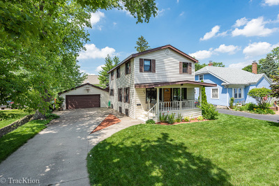 Downers Grove Single Family Home For Sale: 224 4th Street