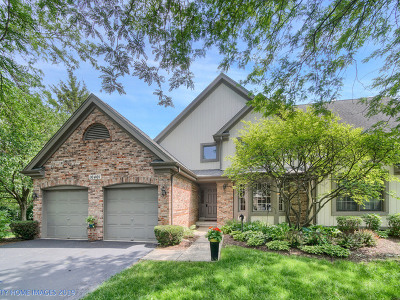 Orland Park Condo/Townhouse For Sale: 10401 Morningside Court