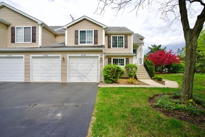 Schaumburg Condo/Townhouse For Sale: 2040 Windemere Circle #2040