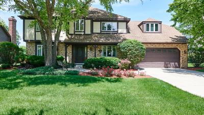 Burr Ridge Single Family Home For Sale: 513 87th Street