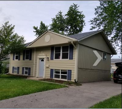 Romeoville Single Family Home For Sale: 453 Berkshire Avenue