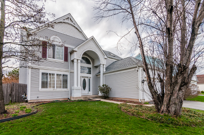 Naperville Rental For Rent: 1401 East Braymore Circle