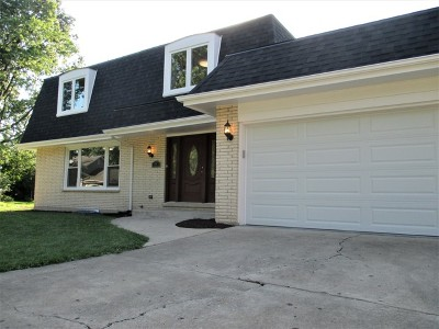 Naperville Single Family Home For Sale: 77 Finch Court