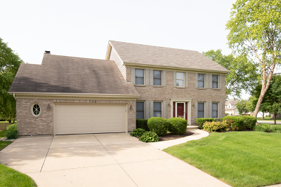 Naperville Single Family Home For Sale: 532 Rock Spring Court