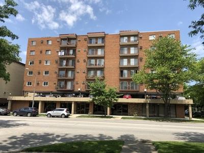 Elmwood Park Condo/Townhouse For Sale: 7830 West North Avenue #308