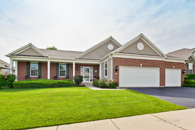 Mundelein Single Family Home For Sale: 3781 Melody Street