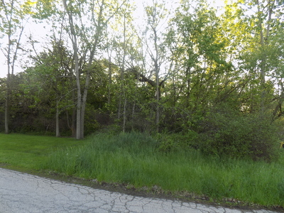 Mc Henry County Residential Lots & Land For Sale: Lot 19 Fair Lane