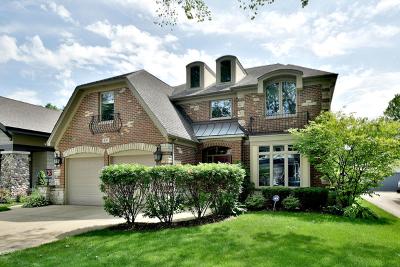 Elmhurst Single Family Home For Sale: 631 South Hillside Avenue