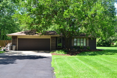 Mokena Single Family Home For Sale: 18120 South Parker Road