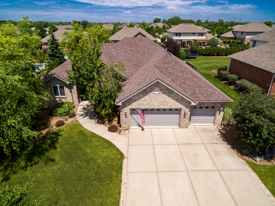 Frankfort Single Family Home For Sale: 8631 Cullen Drive