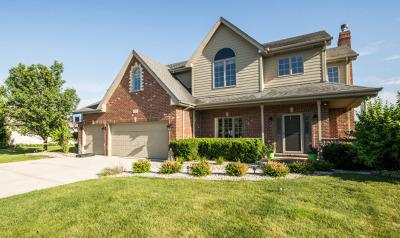 Frankfort Single Family Home For Sale: 8143 Parkview Lane