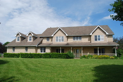 New Lenox Single Family Home For Sale: 22459 South Spencer Road