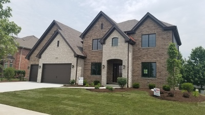 Orland Park Single Family Home For Sale: 17001 Sheridans Trail