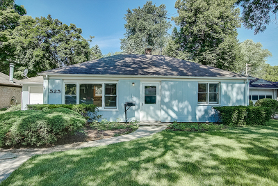 Libertyville Single Family Home Contingent: 525 Riverside Drive