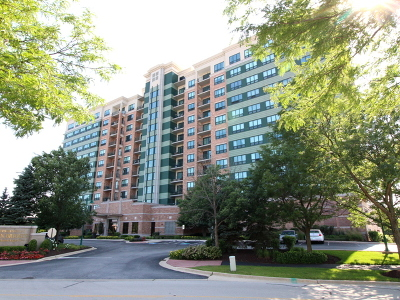 Woodridge Condo/Townhouse For Sale: 6420 Double Eagle Drive #1204