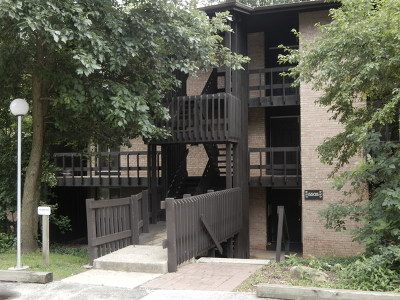 Lisle Condo/Townhouse For Sale: 5505 Lakeside Drive #2F