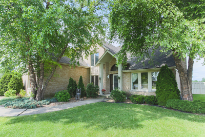 Tinley Park Single Family Home For Sale: 17936 Pheasant Lake Drive