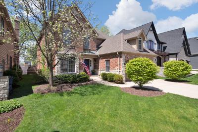 Elmhurst Single Family Home For Sale: 900 South Chatham Avenue