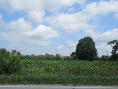 Mc Henry County Residential Lots & Land For Sale: 21970 West Grant Highway