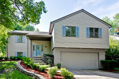 Vernon Hills Single Family Home For Sale: 143 Midway Lane