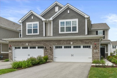 Lockport Condo/Townhouse For Sale: 16128 West Switch Grass Road