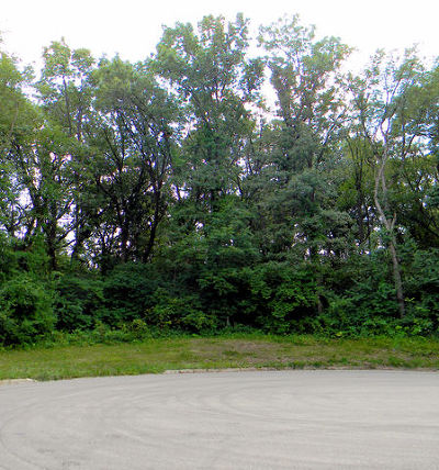 Mc Henry County Residential Lots & Land For Sale: 7111 Forest Oak Drive