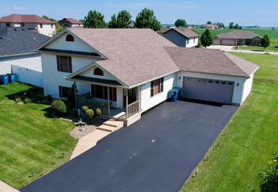 Bourbonnais Single Family Home For Sale: 1783 Samantha Lane