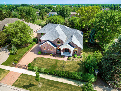 Naperville Single Family Home For Sale: 2648 Sutton Circle