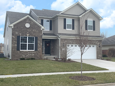 Minooka, Channahon Single Family Home For Sale: 612 Flanagan Drive