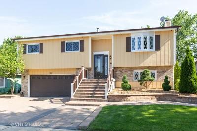 Hampshire Single Family Home For Sale: 362 Hillcrest Avenue