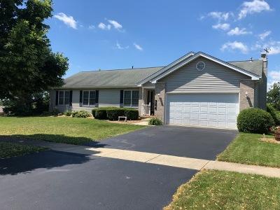Geneva Single Family Home For Sale: 324 West Lane