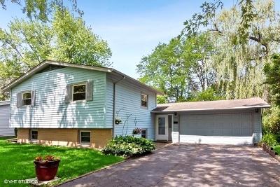 Hanover Park Single Family Home For Sale: 7156 Edgebrook Lane