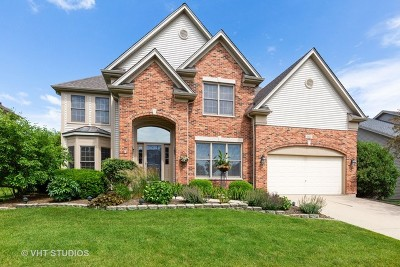 South Elgin Single Family Home For Sale: 805 Chasewood Drive
