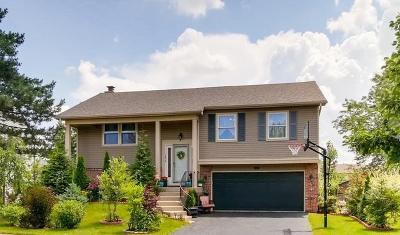 Carol Stream Single Family Home For Sale: 1296 Big Horn Trail