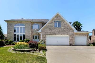 Orland Park Single Family Home New: 14210 Scott Lane