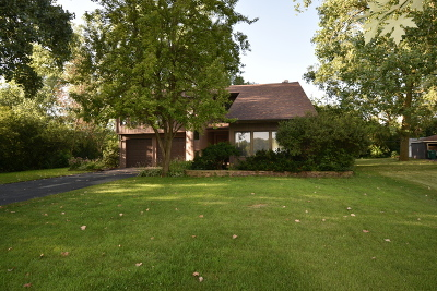 Winfield Single Family Home For Sale: 27w770 Shady Way Drive