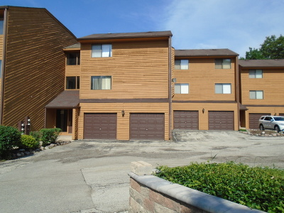 Hickory Hills Condo/Townhouse For Sale: 9555 Arrowhead Drive #D2