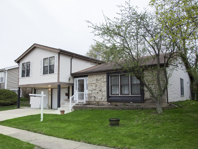 Glendale Heights Single Family Home For Sale: 193 Harding Drive